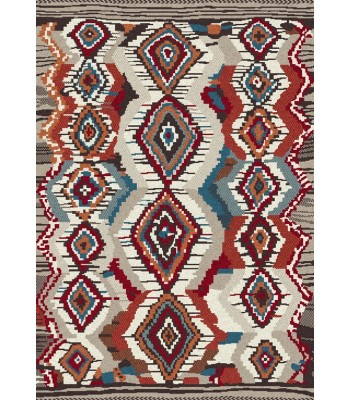Dynamic Rugs - Nomad 6226-101 Ivory-Multi