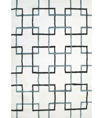 Dynamic Rugs - Silky Shag 5901-190 White-Grey-Black