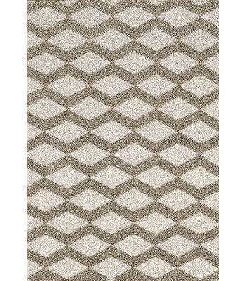 Dynamic Rugs - Silky Shag 5904-111 White