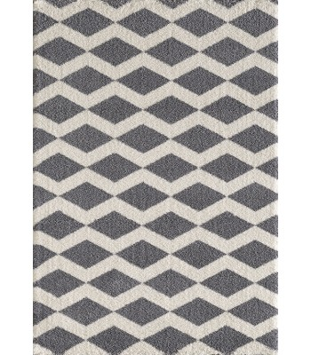 Dynamic Rugs - Silky Shag 5904-900 Grey
