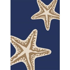 Central OrientalTributarySea Star DuoNavy-Ivory